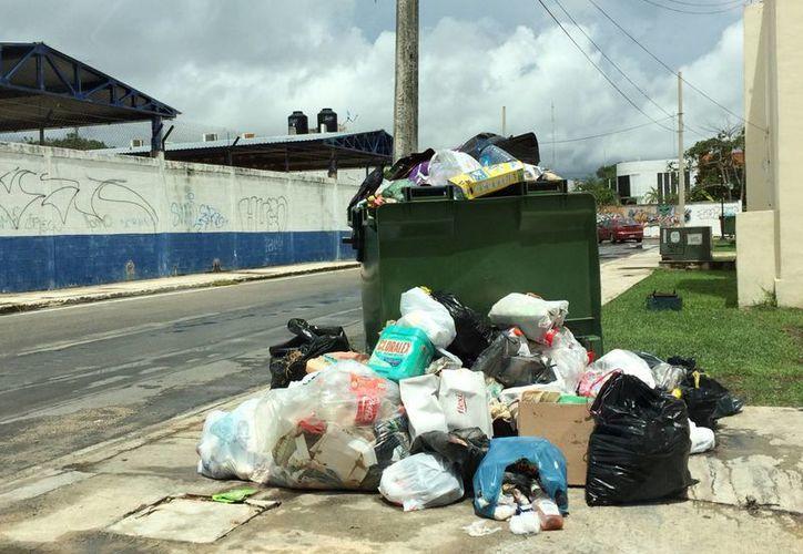 El sector hotelero manifestó su preocupación por la falta de recolección de basura, pues da mala imagen a Playa del Carmen. (Adrián Barreto/SIPSE)
