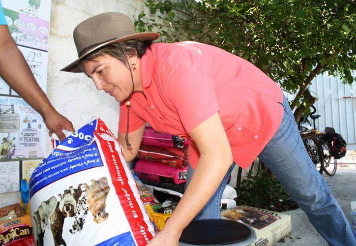 Rebasan la meta de juntar alimento para perros de la calle, recaudaron más de una tonelada. (Octavio Martínez/SIPSE)