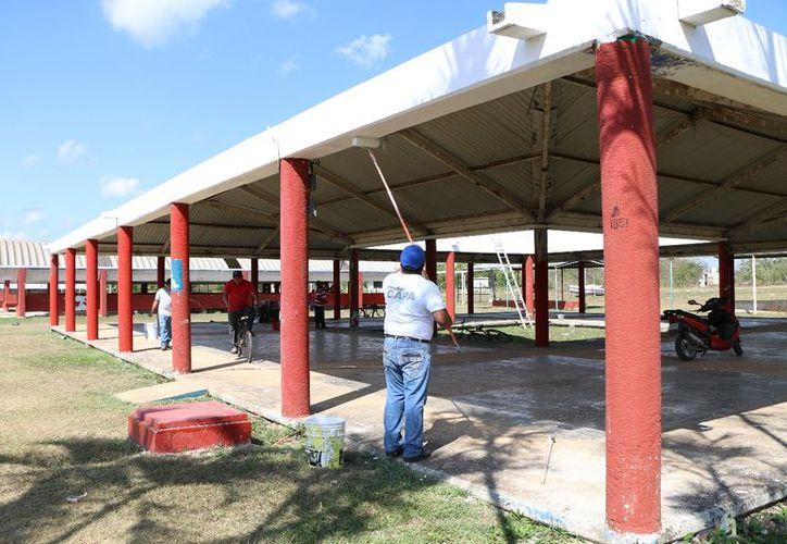 El personal del área de Servicios Públicos realiza las labores. (Raúl Balam/SIPSE)