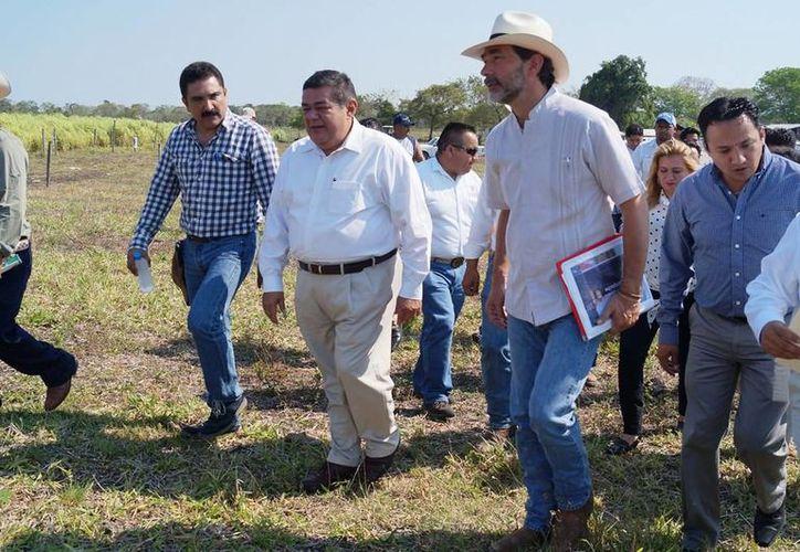 Los fondos federales en materia agraria que se destinaron a la entidad fueron por más de 500 millones de pesos en el 2014. (Edgardo Rodríguez/SIPSE)