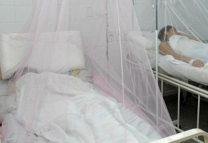 El dengue ha matado a dos personas en Panamá; las autoridades redoblaron la campaña nacional de fumigación. (EFE)