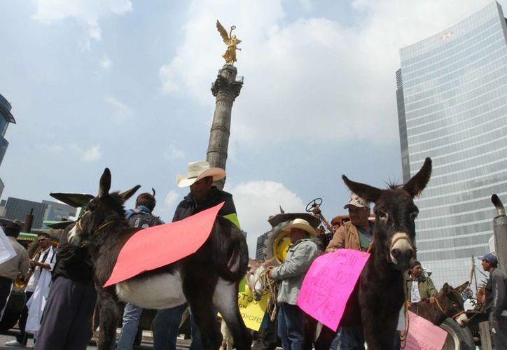 La propuesta señala que el horario para las manifestaciones será entre las 11 de la mañana y las seis de la tarde. (Archivo/Notimex)