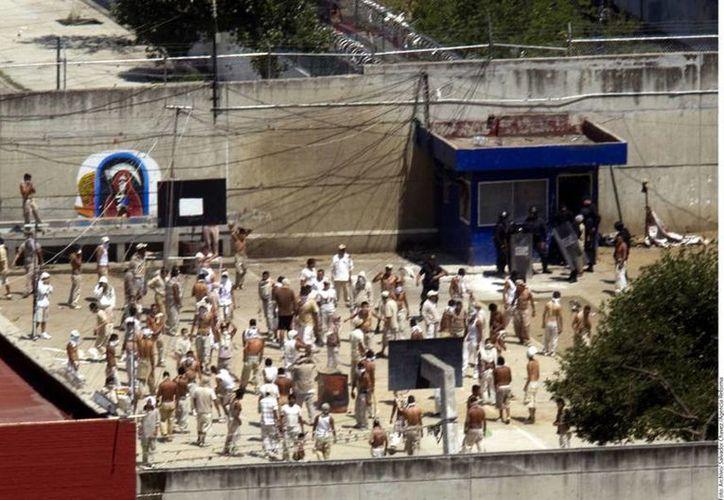 En los reclusorios de la Ciudad de México, 51.2 por ciento de los internos están acusados del delito de robo. (vivelohoy.com)