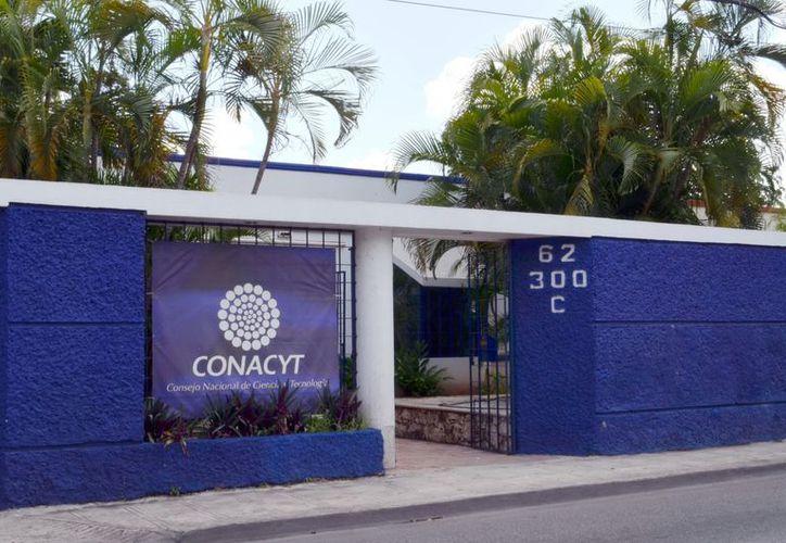 El director regional del Conacyt espera un crecimiento gradual en la inversión en ciencia y tecnología. (Theany Ruz/SIPSE)