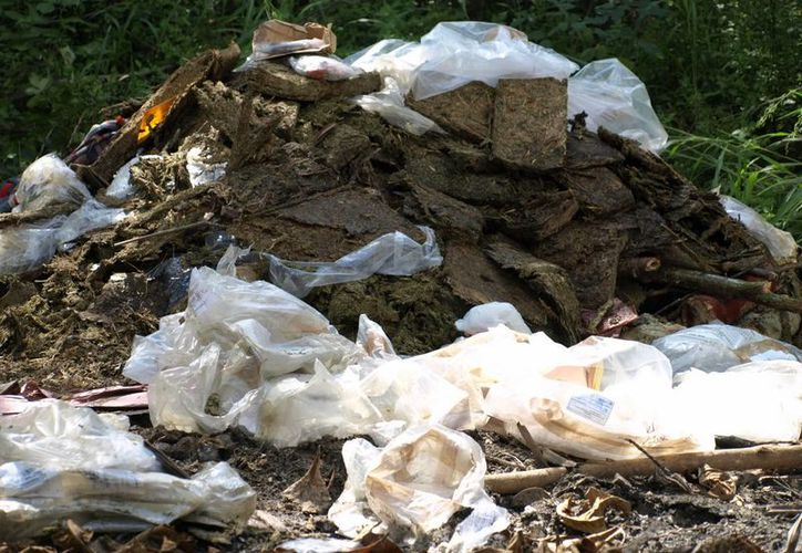 La PGR precisó que se quemaron 410 kilos 500 gramos 300 miligramos de marihuana, 15 gramos 900 miligramos de cocaína, 29 unidades psicotrópicas de trihexifenidilo. (SIPSE)