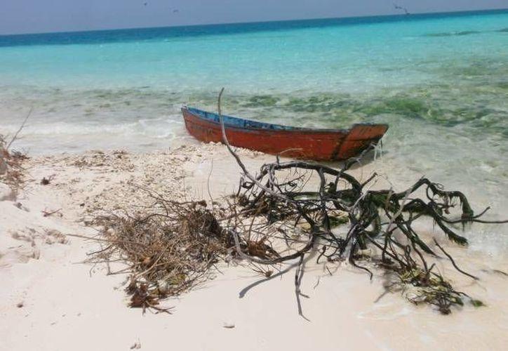 Los responsables de las embarcaciones 'Bischo' y 'Il Massimo' tendrán que pagar 2 millones 817 mil 408 pesos a la Profepa tras haber fondeado en septiembre, sin autorización federal, en aguas del Parque Nacional Arrecife Alacranes. (Foto de contexto de Profepa)