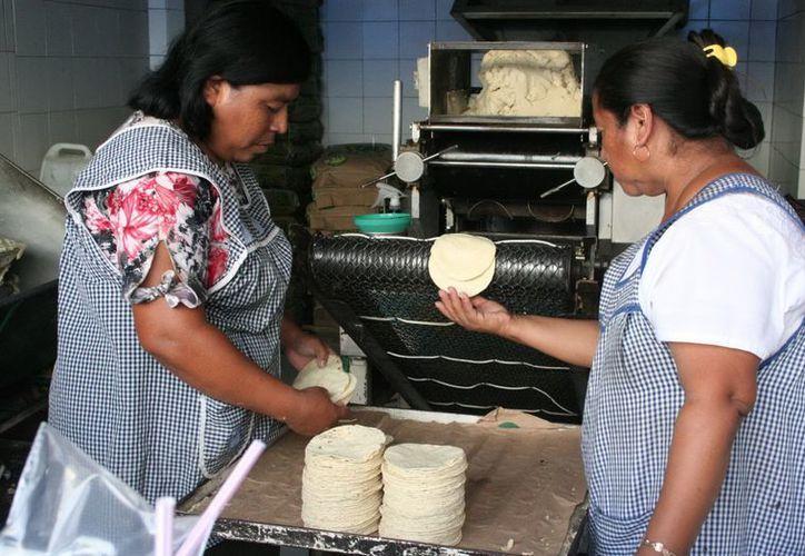En febrero, el precio del kilo de tortilla podría llegar a 16 pesos, advierte el líder de los molineros yucatecos. (SIPSE)