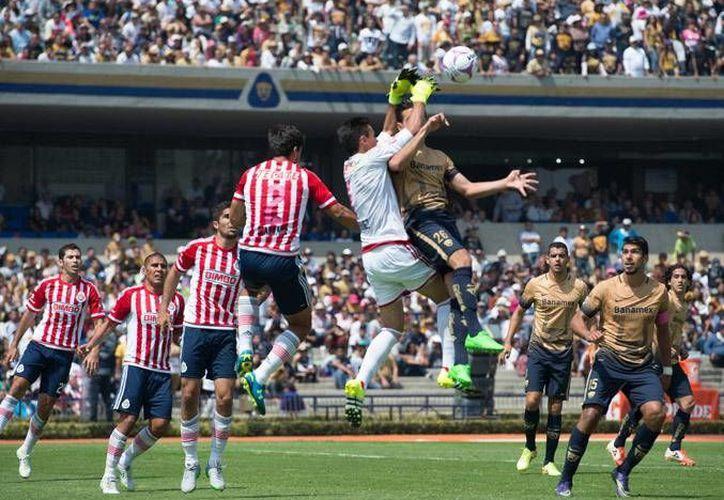 Si Chivas y Pumas aspiran a estar en la liguilla tienen que dar el salto este domingo cuando se enfrenten en el cierre de la jornada 12 de la Liga MX. (Imágenes/ Mexsport/ Facebook)