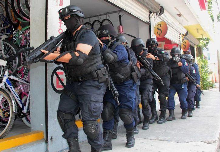 Divididos en dos grupos, 20 elementos del GOE participaron ayer un operativo de entrenamiento que consistió en el rescate de dos secuestrados.  (Gustavo Villegas/SIPSE)