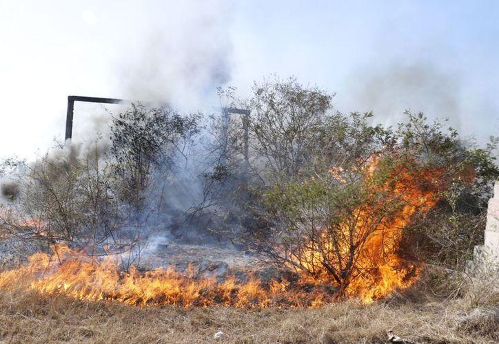 El martes se registró un 'mega' incendio en Santa Rosa, Kanasin. (Fotos Acosta Cámara/SIPSE)