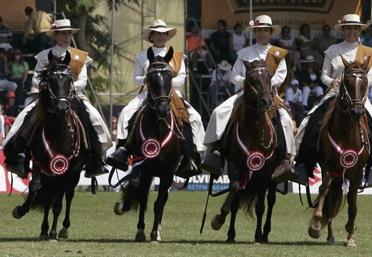 """El caballo peruano de paso era """"prácticamente desconocido"""" fuera de Perú hace 25 años. (EFE)"""