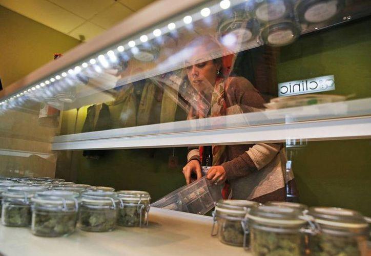 Agencias de viajes llevan a Colorado y Washington a consumidores de marihuana que no pueden adquirirla en sus ciudades de origen sin ser encarcelados. (AP)