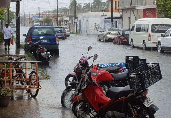 En la mayor parte de la Península de Yucatán no se descartan precipitaciones de diversa intensidad. (Gerardo Keb/Milenio Novedades)
