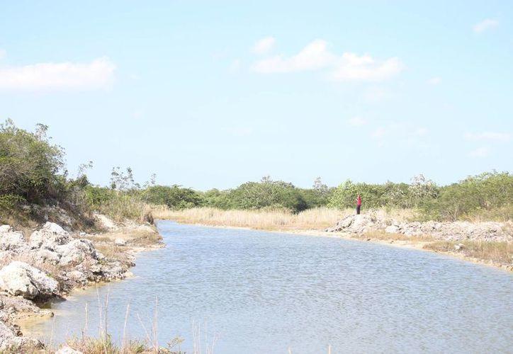 Perdió la vida en las aguas de una laguna artificial de la zona continental. (Redacción)