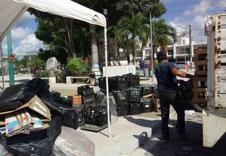 El programa Reciclatón se ha implementado frente al Palacio Municipal. (Sara Cauich/SIPSE)