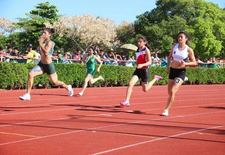 El atletismo cerrará las actividades del mes de febrero. (Milenio Novedades)