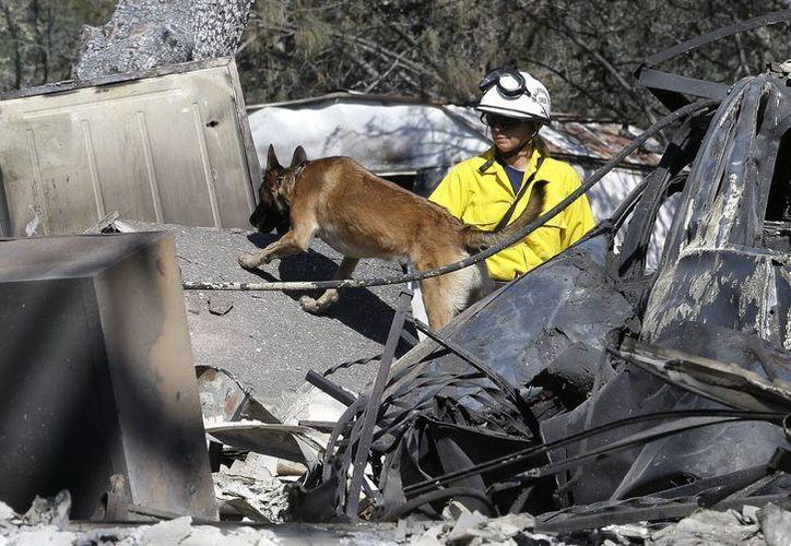 El incendio Erskine en el centro de California es combatido por más de dos milk bomberos. (AP)