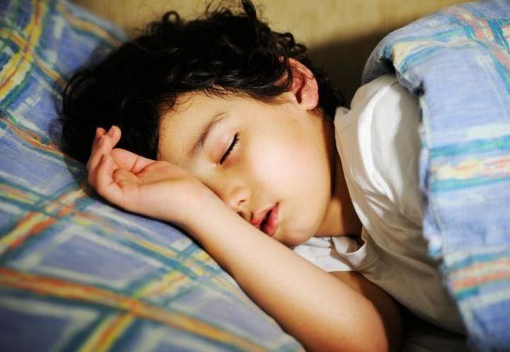 Las horas de sueño perdido nunca se recuperan, a pesar de que se aprovechen los tiempos libres para dormir. (SIPSE)