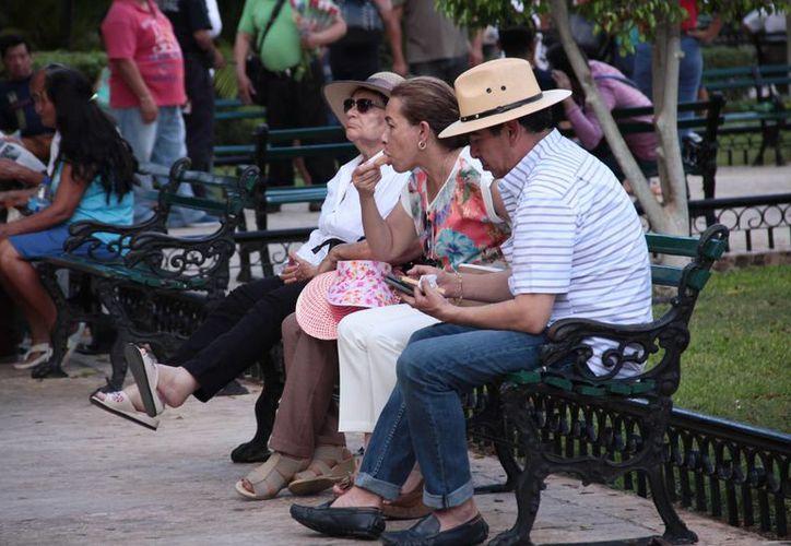 La temperatura máxima en la capital yucateca en este lunes fue de 33.9 grados a las tres de la tarde. (Jorge Acosta/ Milenio Novedades)