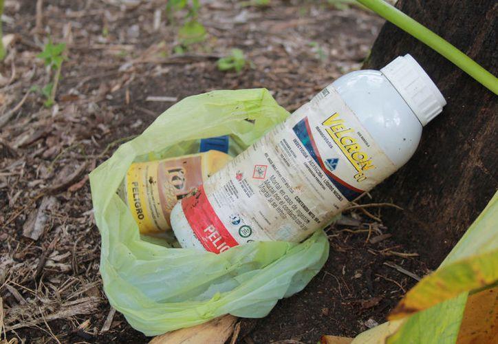 Alrededor de seis toneladas de frascos se utilizan al año en las actividades agrícolas, de los cuales sólo un 10% se recupera. (Javier Ortiz/SIPSE)