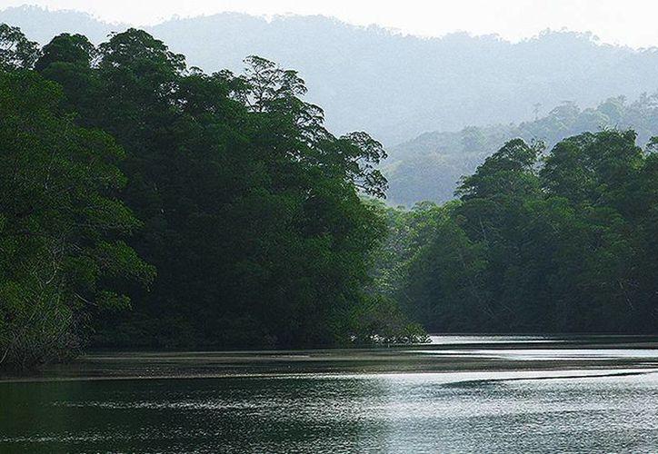 En Panamá, casi el 70 % de sus 50 mil hectáreas no forma parte de ninguna área protegida, a pesar de tener condiciones para ser declarado un humedal de importancia internacional.