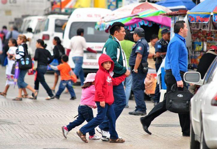La información de la población mexicana estará disponible para usuarios especializados. (Archivo/Notimex)