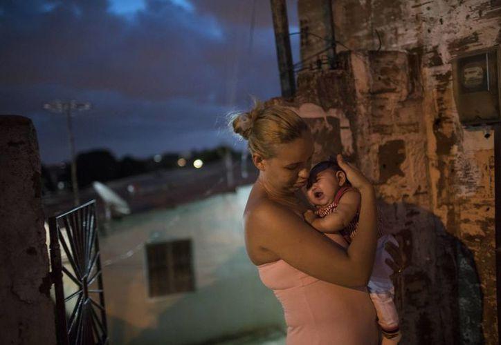 Hasta el momento no hay ninguna prueba definitiva de que el Zika sea el responsable de un aumento en el número de bebés que nacen con microcefalia en Brasil. (Agencias)