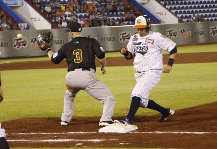 Enfrentaron el tercer juego de la serie en el Beto Ávila. (Ángel Mazariego/SIPSE)