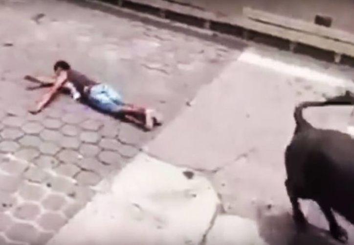 Pedro Lozada fue uno de los 6 lesionados que fueron embestidos por los toros de Xico. A pesar de la gravedad del ataque, se encuentra bien de salud. (Captura de pantalla)