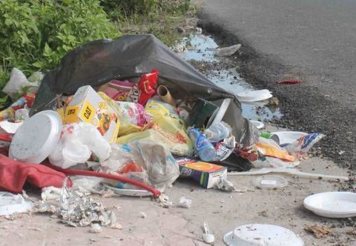 La ex documentalista de Animal Planet afirma que el centro de Cancún está sucio. (Contexto/SIPSE)