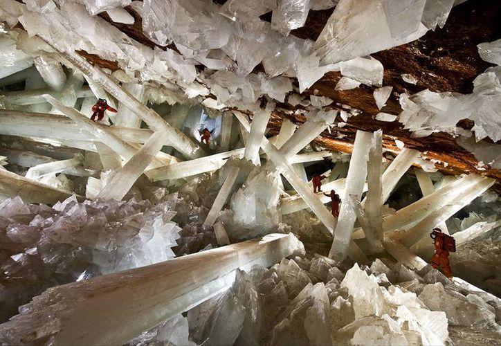 En la Cueva de los cristales de Naica, Chihuahua, científicos encontraron organismos que sobrevivieron 60 mil años alimentándose de sulfito, manganeso u óxido de cobre. (naica.com.mx)