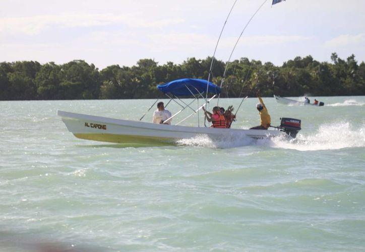 Los pescadores registrados apoyan la veda para la preservación de la especie, que se encuentra impresa en el escudo del Estado. (Harold Alcocer/SIPSE)