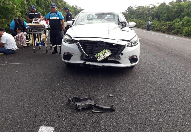 El Mazda fue trasladado al corralón en lo que se llevan a cabo las investigaciones correspondientes, mientras que los ocupantes fueron trasladados al hospital. (SIPSE)