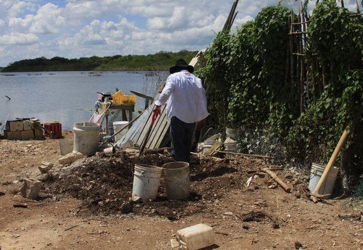 En los primeros días de julio el área de Salud Ambiental iniciará los recorridos en la zona rural. (Harold Alcocer/SIPSE)