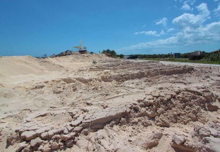 Millonarias pudieran ser las multas para responsables de saqueo de arena en Punta Morena. (Gustavo Villegas/SIPSE)