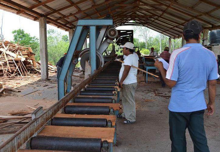 La demanda se empieza a incrementar al conocerse que la materia prima proviene de ejidos con manejo forestal certificado. (Juan Rodríguez / SIPSE)