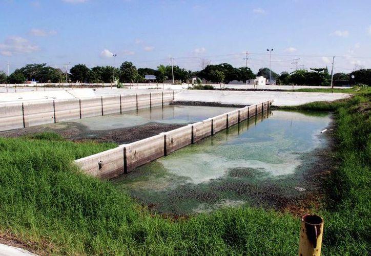 Las lagunas de oxidación recibirán tratamiento de nueva cuenta para su clausura. (Milenio Novedades)