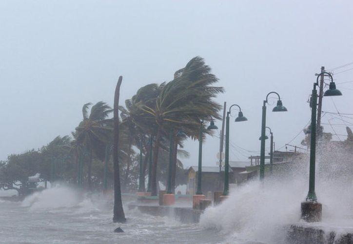 El huracán Irma dejó al menos diez muertos . (Univisión).