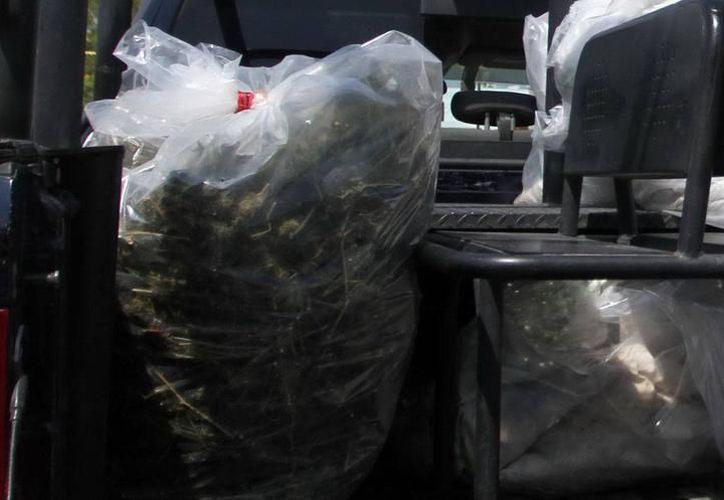 El imputado fue encontrado con 10 kilogramos de marihuana. (Imagen ilustrativa/ SIPSE)