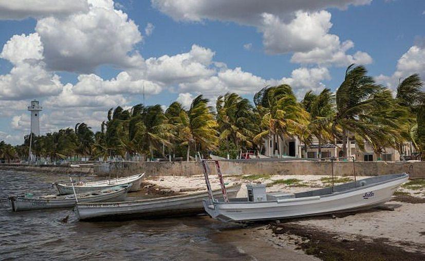 El secretario al Fomento Ecológico de Yucatán apuntó que en estos lugares hay un aproximado de 80 mil toneladas frescas de sargazo, al año. (Televisa News)