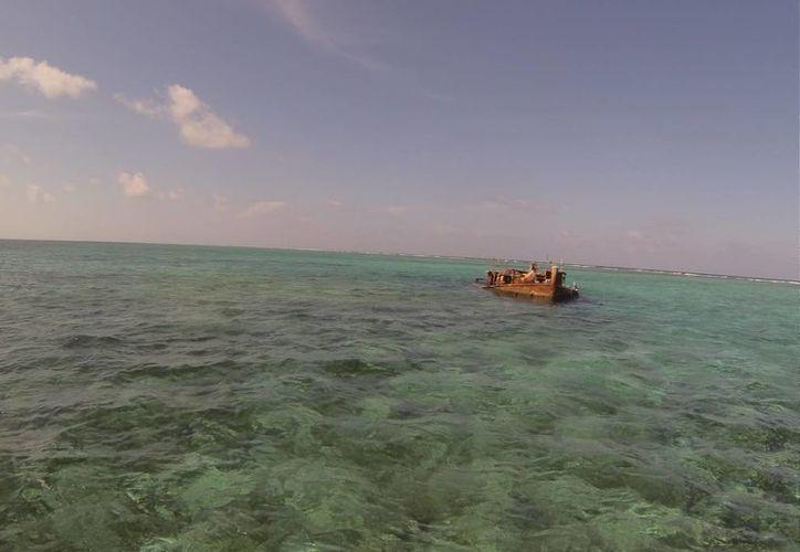 Buscan que la pesca sea una actividad fructífera. (Israel Leal/SIPSE)