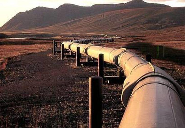 El viceministro petrolero Ali Majedi se quejó de que Pakistán ha hecho poco para construir su propia sección del proyecto. (Foto de contexto/lhvnews.com)