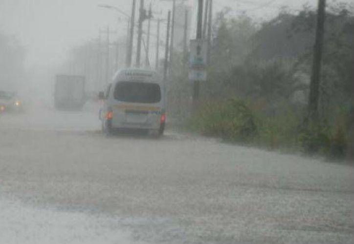 A pesar de las fuertes lluvias que se han registrado en Quintana Roo, las carreteras y caminos rurales siguen siendo transitables. (Contexto/Internet)