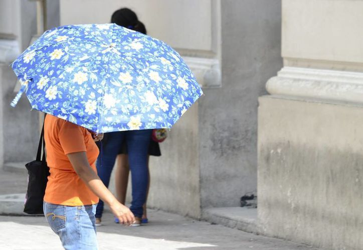 Para este sábado y domingo se prevén en Yucatán máximas de 29 a 33 grados. (Milenio Novedades)