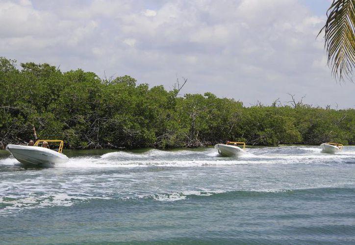 Reportan la renta del 65% de las embarcaciones. (Tomás Álvarez/SIPSE)
