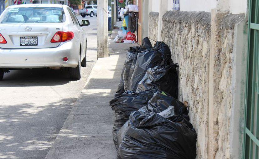 El programa de separación de basura iniciará en agosto para toda la ciudadanía. (Adrián Barreto/SIPSE)