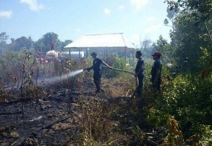 Este fin de semana dos incendios en áreas verdes causaron la movilización de los bomberos de Cozumel.  (Irving Canul/SIPSE)