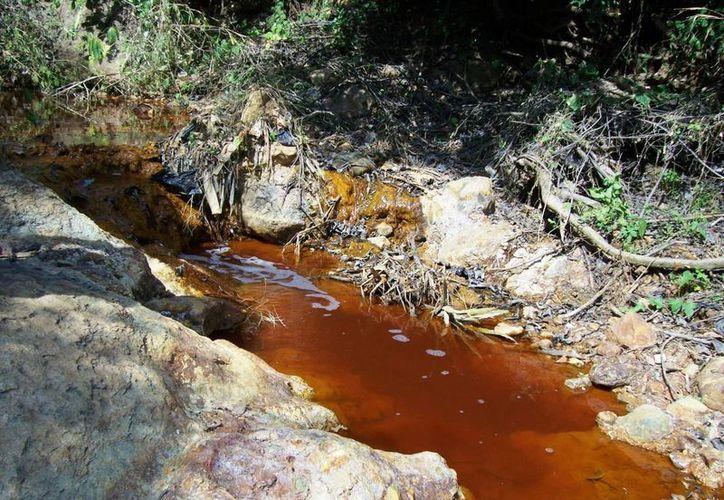 Grupo México creó un fideicomiso por 2 mil millones de pesos para reparar los daños en el Río Sonora. (ecoosfera.com)