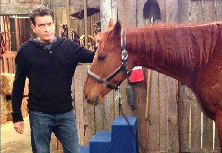 La pareja tenía previsto contraer nupcias en noviembre próximo, pero Sheen se echó atrás. (Instagram/Charlie Sheen)