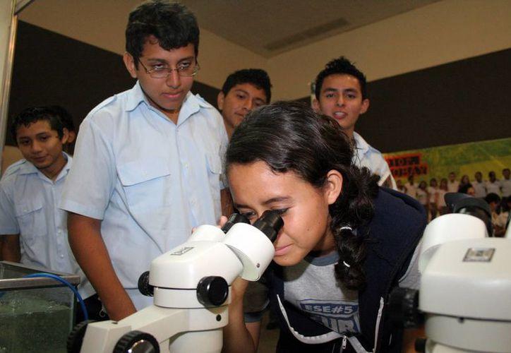 Beneficiarios de los programas Raíces Científicas y Savia. (Milenio Novedades)